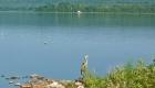pier-crane